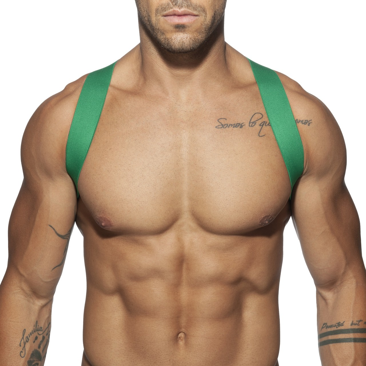 SPIDER HARNESS GREEN 18
