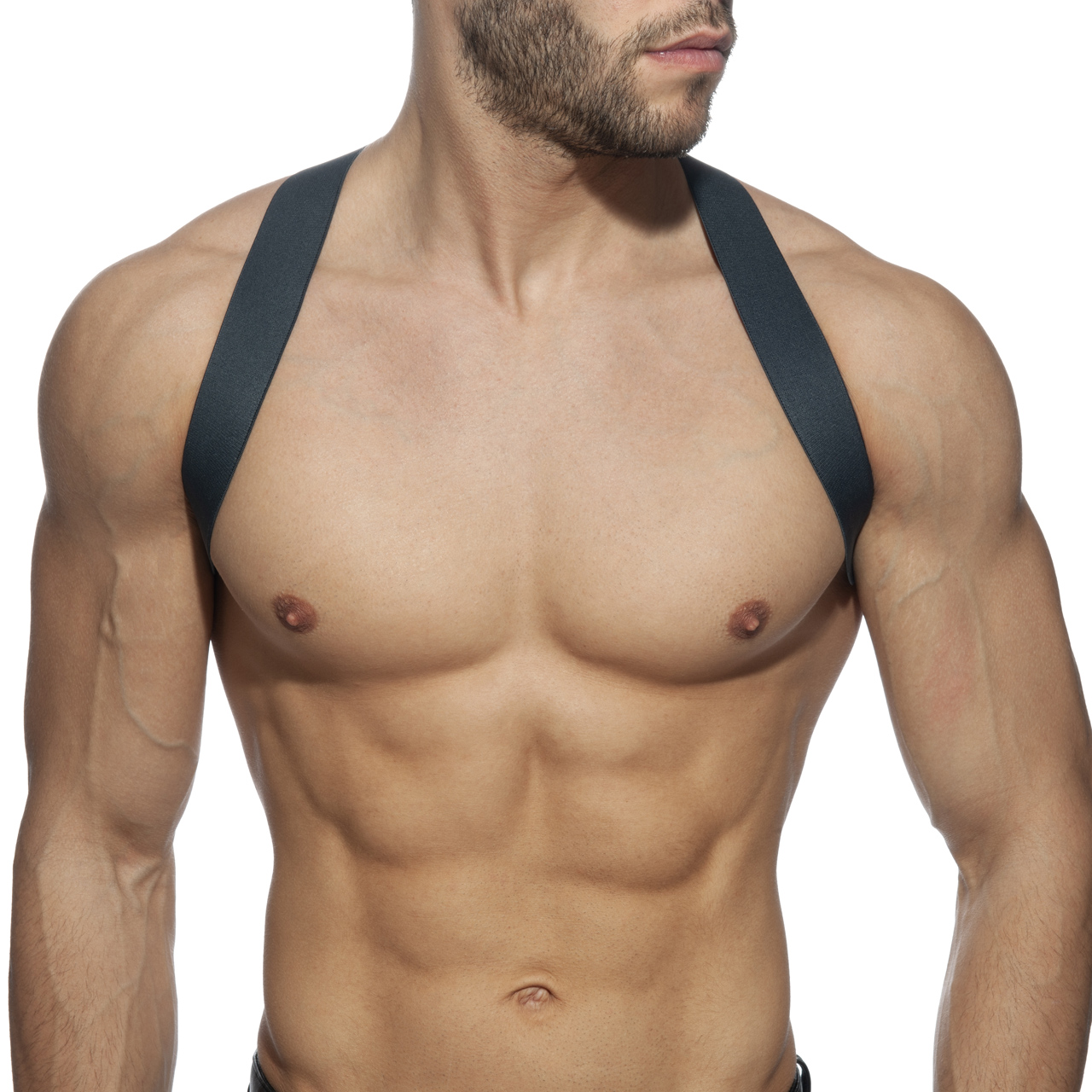 SPIDER HARNESS CHARCOAL 15